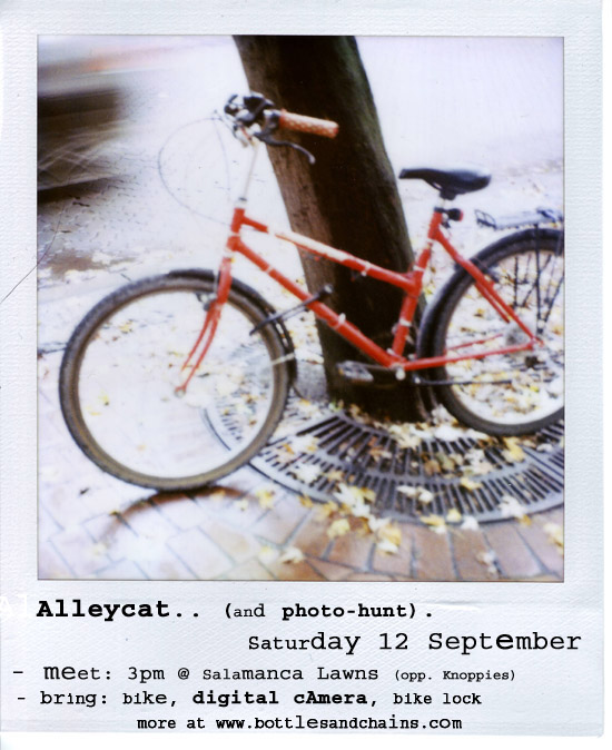 alleycat_and_photohunt